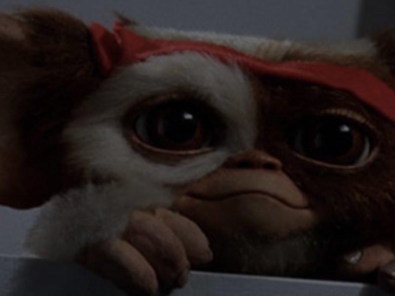 Gremlins qui sort de sa cachette